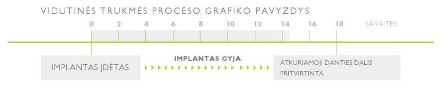 implantacijos trukmes grafikas
